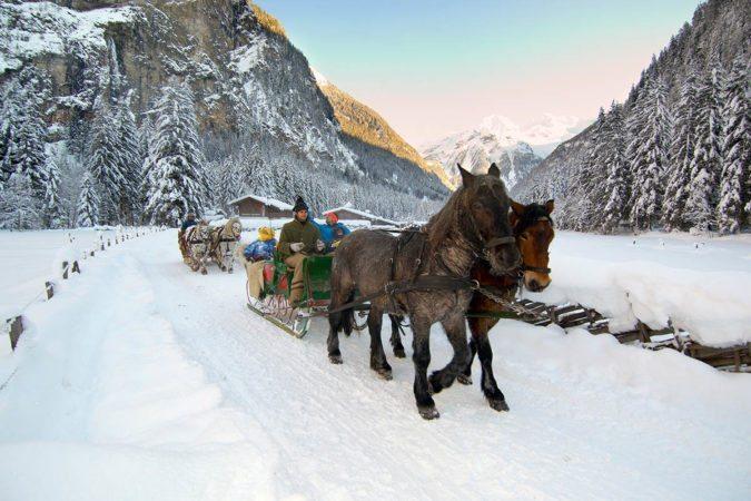 Pferdeschlittenfahrt im Gasteinertal - Tofererhof Urlaub am Bauernhof