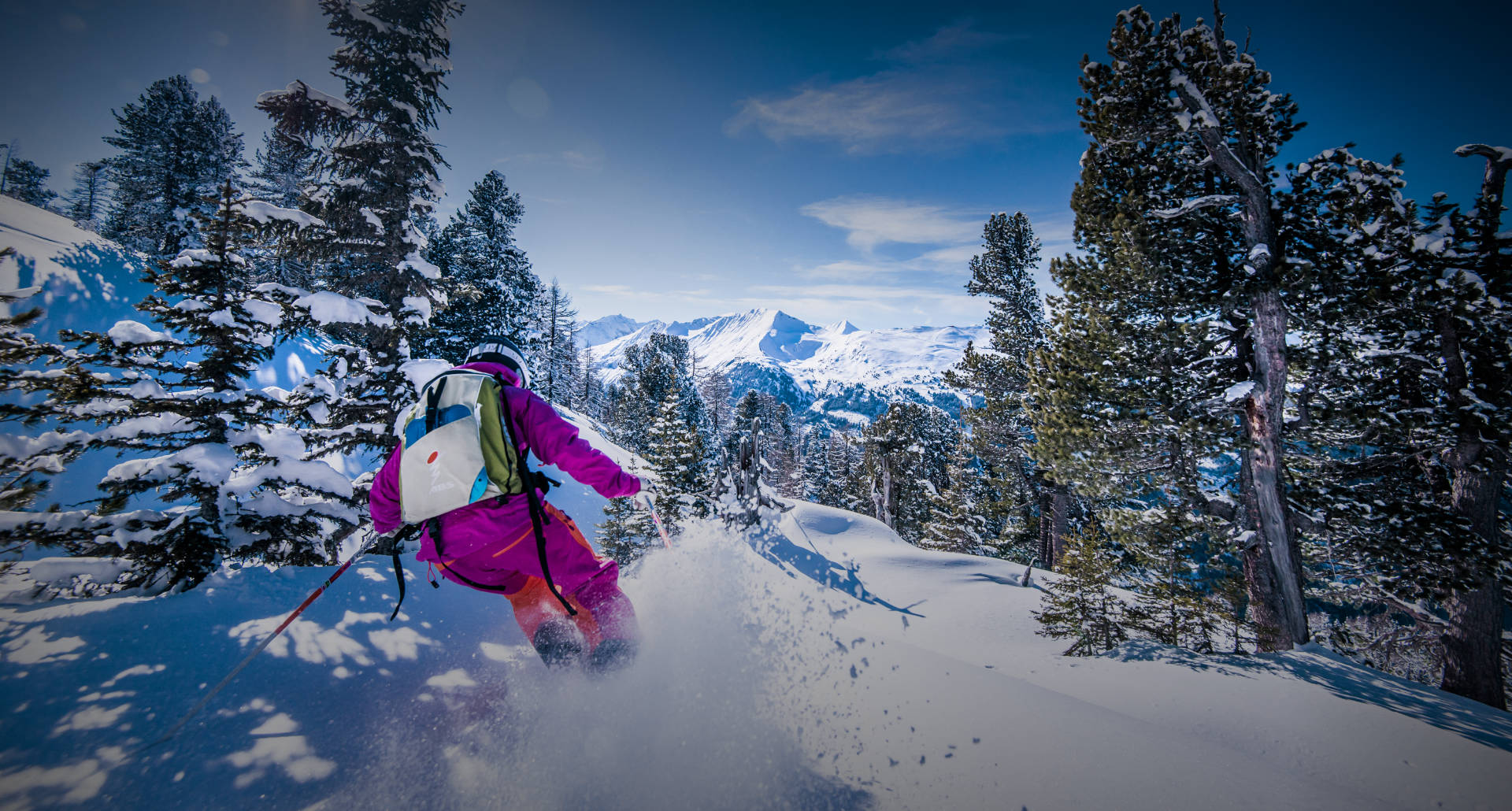 Winter-& Skiurlaub in Bad Hofgastein - Urlaub am Bauernhof - Tofererhof